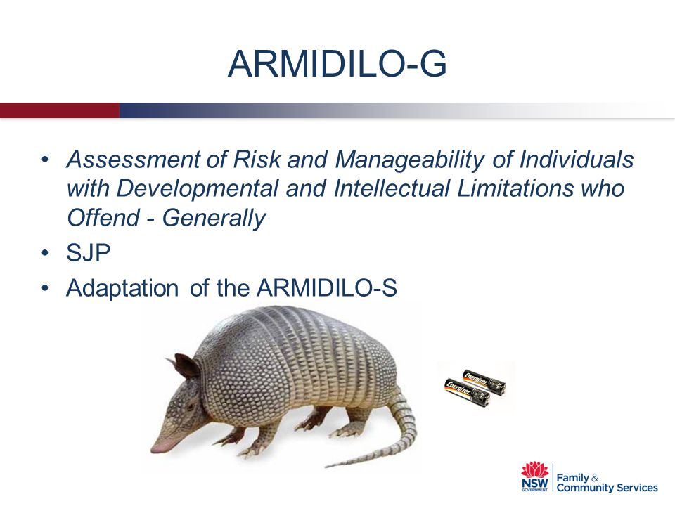 ARMIDILO-G Assessment of Risk and Manageability of Individuals with Developmental and Intellectual Limitations who Offend - Generally.