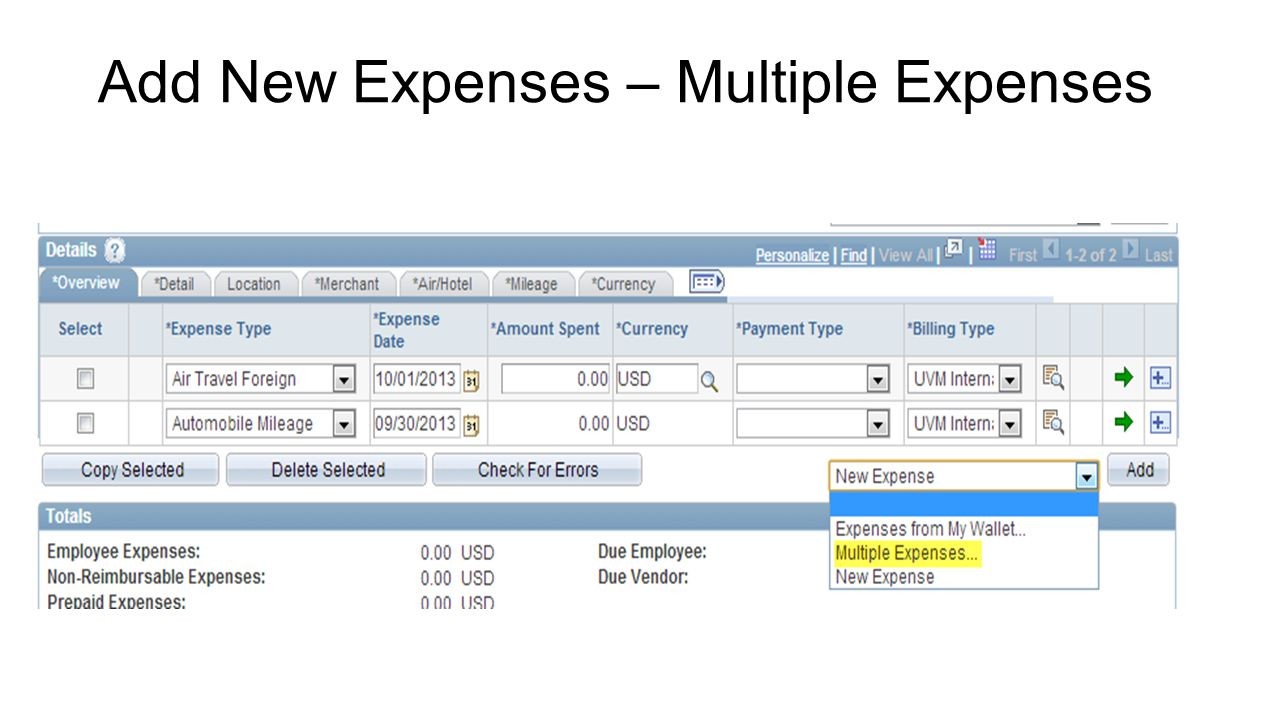 Add New Expenses – Multiple Expenses