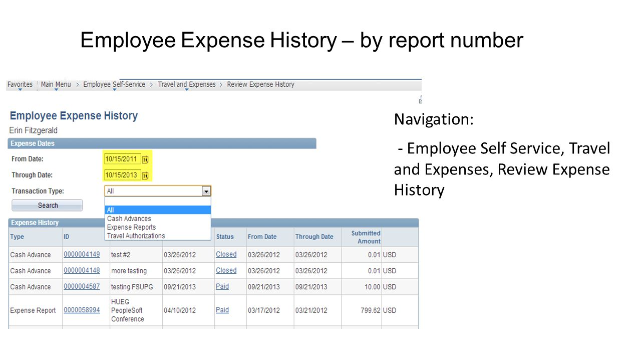 Employee Expense History – by report number