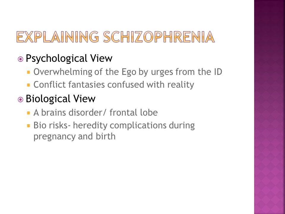 Explaining schizophrenia