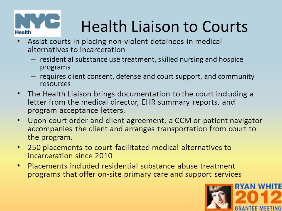Health Liaison to Courts