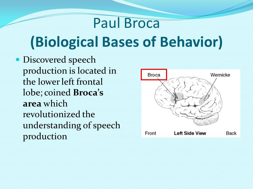 Paul Broca (Biological Bases of Behavior)