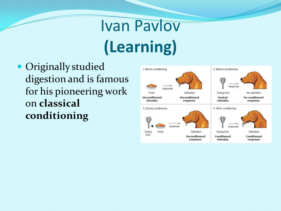 Ivan Pavlov (Learning)