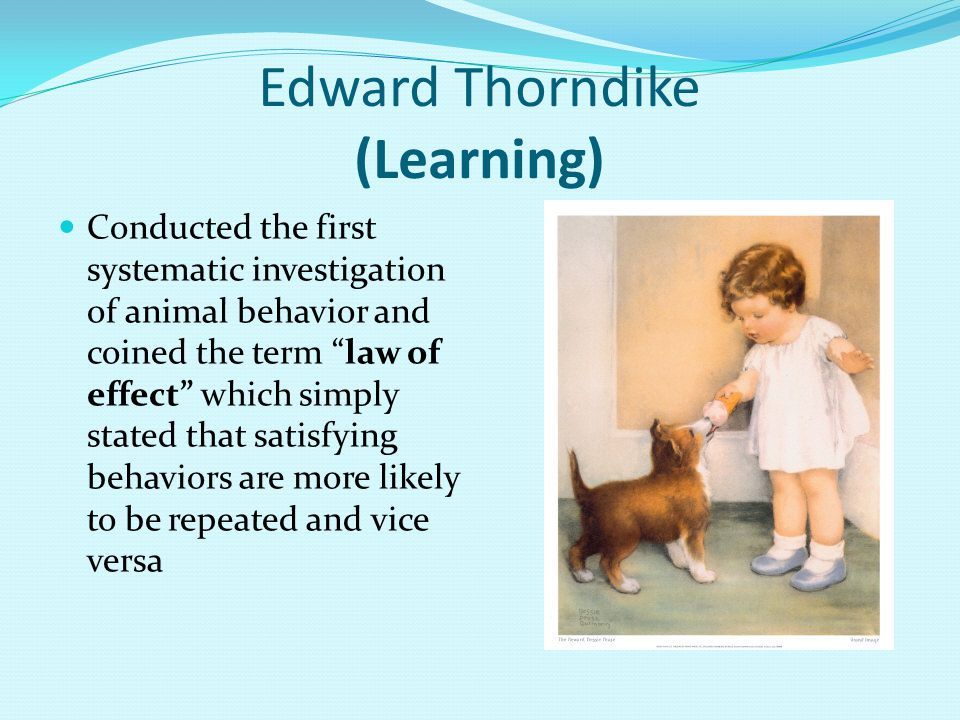 Edward Thorndike (Learning)