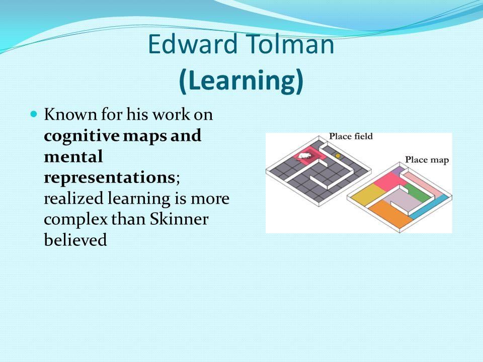 Edward Tolman (Learning)