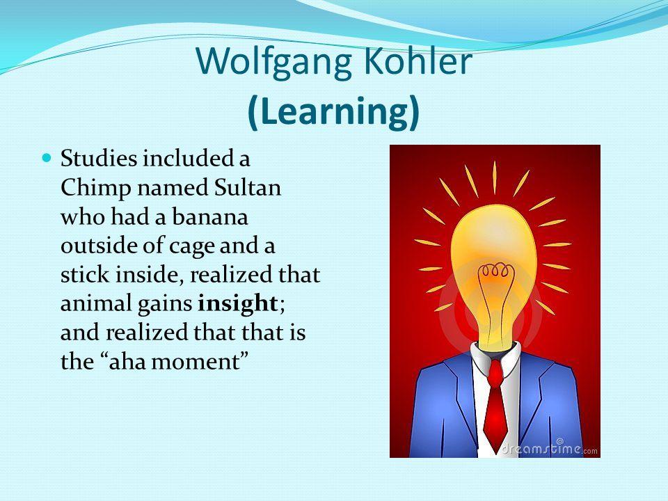 Wolfgang Kohler (Learning)
