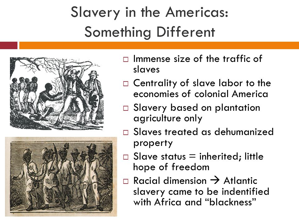 Slavery in the Americas: Something Different