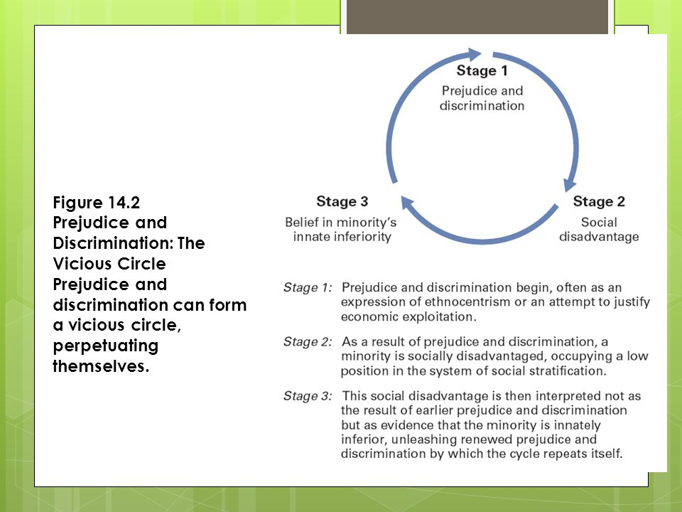 Figure 14.2 Prejudice and Discrimination: The Vicious Circle Prejudice and discrimination can form a vicious circle, perpetuating themselves.