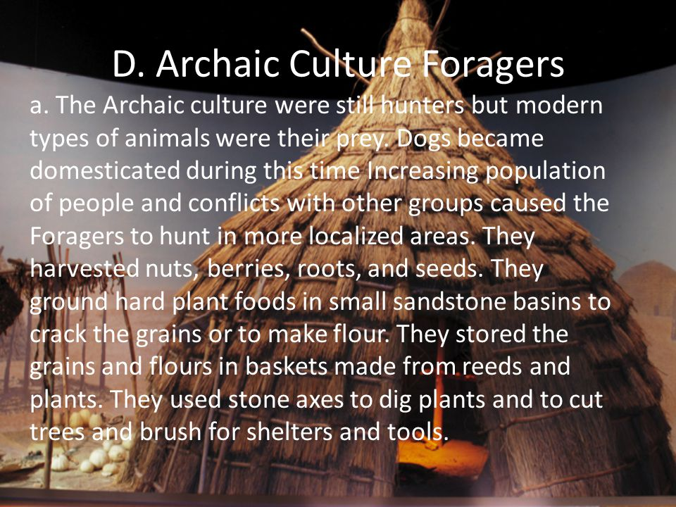 D. Archaic Culture Foragers