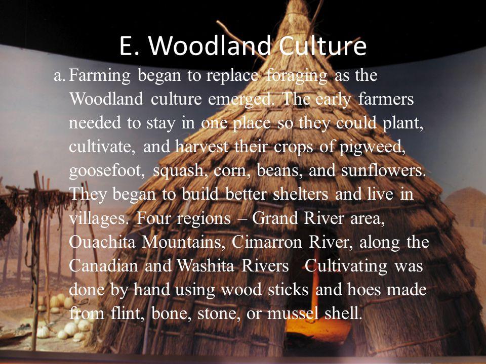 E. Woodland Culture