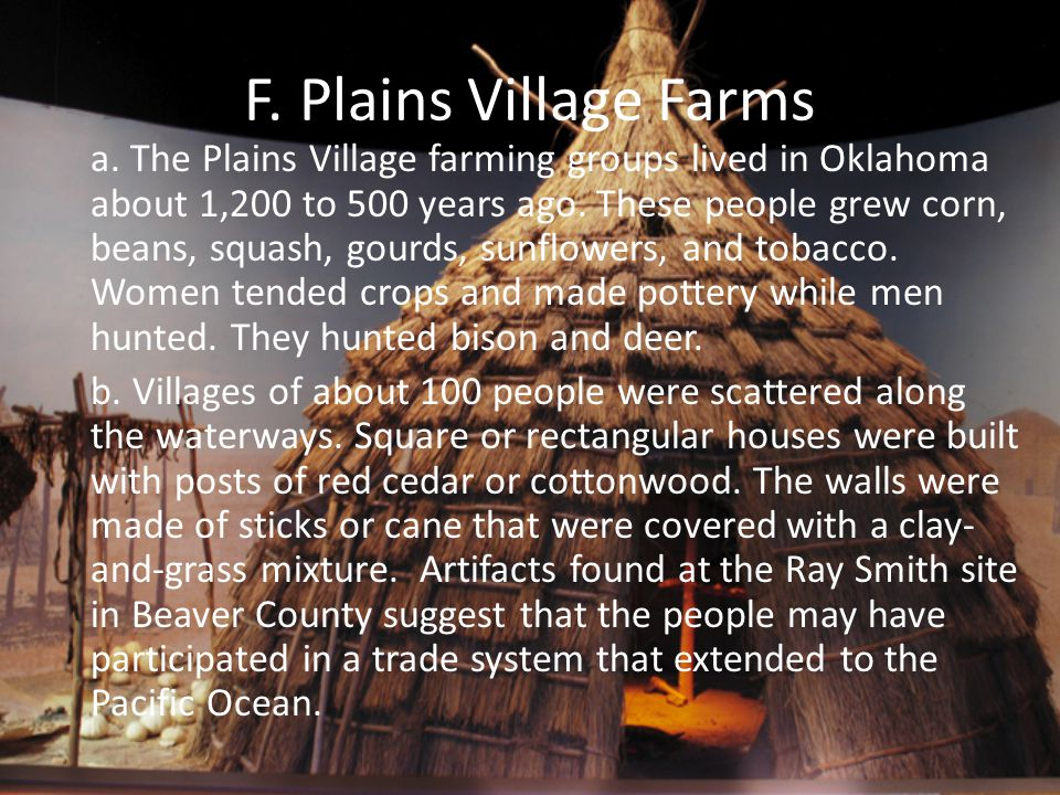 F. Plains Village Farms