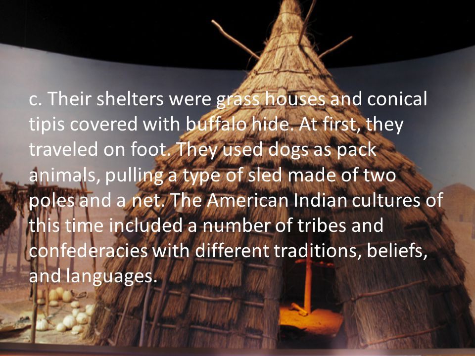 c. Their shelters were grass houses and conical tipis covered with buffalo hide.
