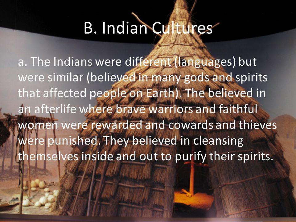 B. Indian Cultures