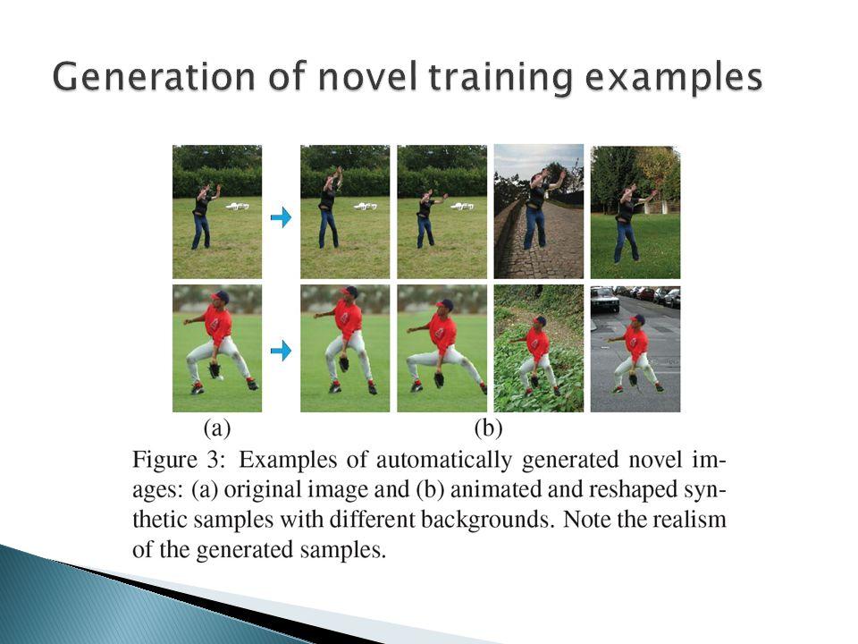 Generation of novel training examples