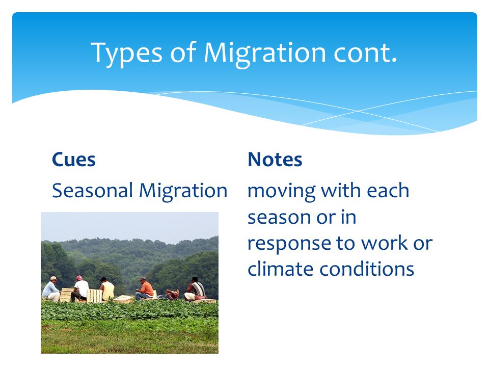 Types of Migration cont.