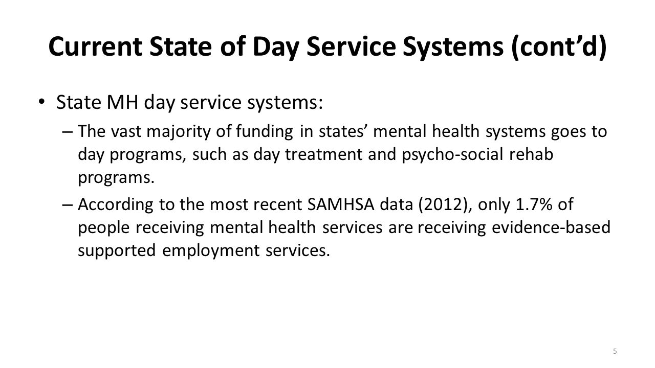 Current State of Day Service Systems (cont'd)