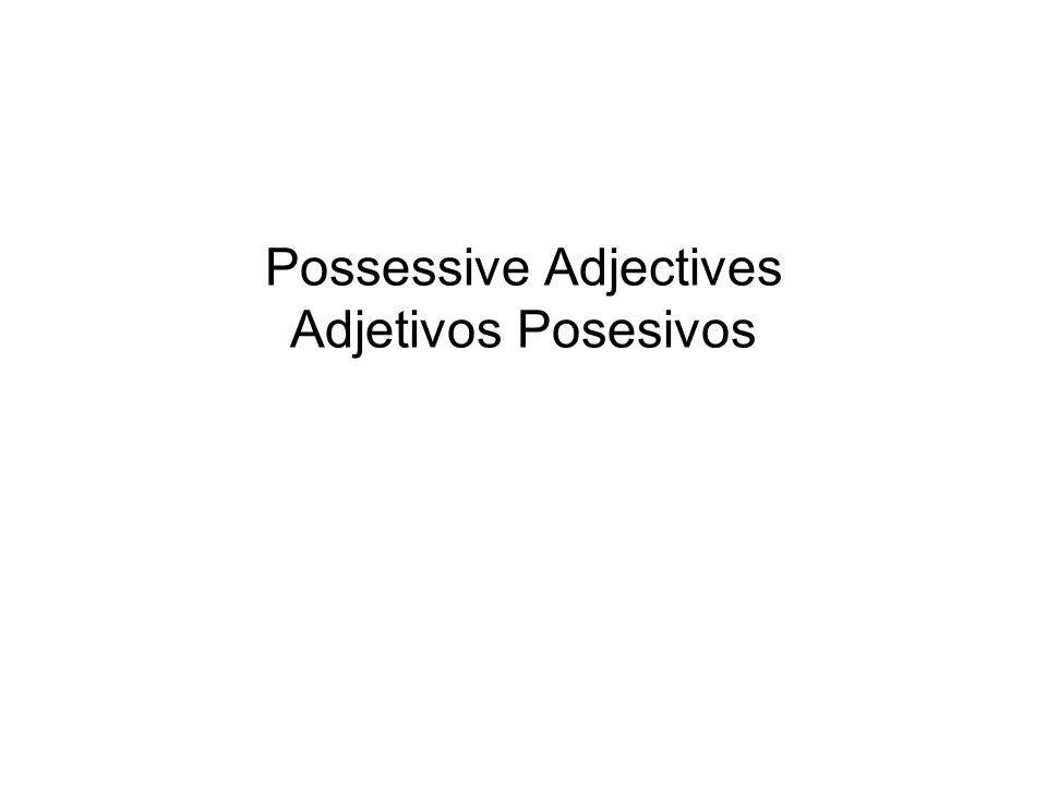 Possessive Adjectives Adjetivos Posesivos