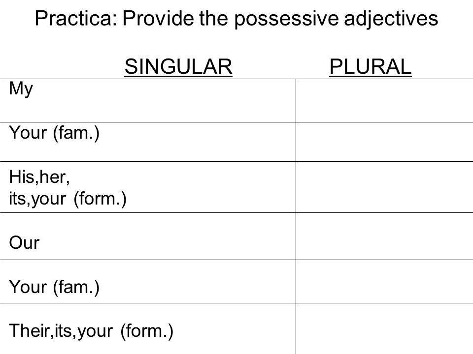 Practica: Provide the possessive adjectives