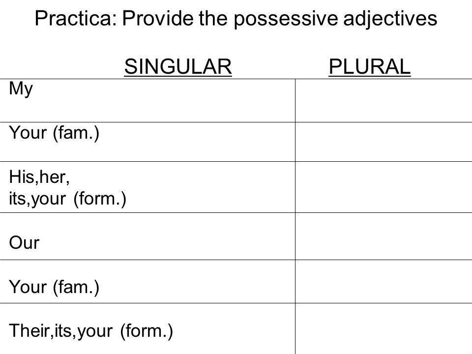 Practica: Provide the possessive adjectives