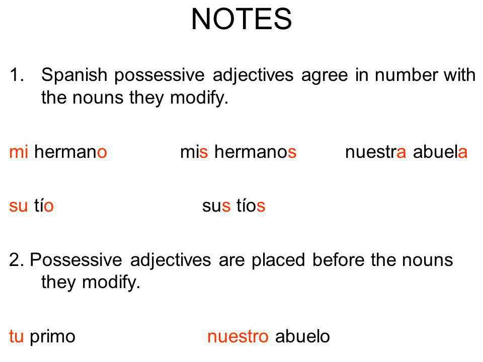 NOTES Spanish possessive adjectives agree in number with the nouns they modify. mi hermano mis hermanos nuestra abuela.