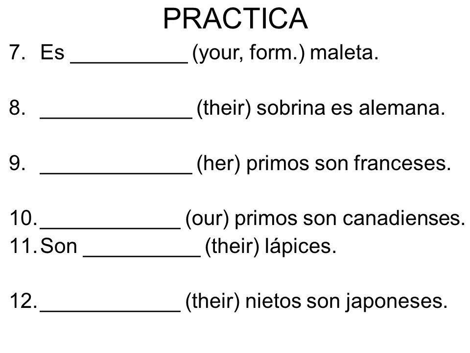 PRACTICA Es __________ (your, form.) maleta.