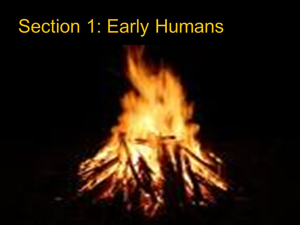Section 1: Early Humans