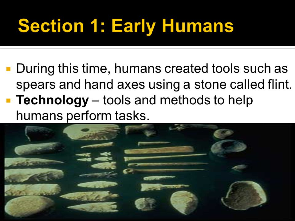 Section 1: Early Humans During this time, humans created tools such as spears and hand axes using a stone called flint.