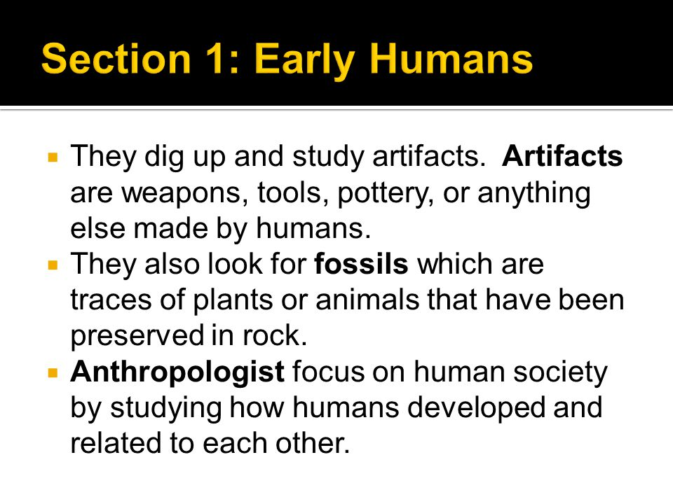 Section 1: Early Humans They dig up and study artifacts. Artifacts are weapons, tools, pottery, or anything else made by humans.