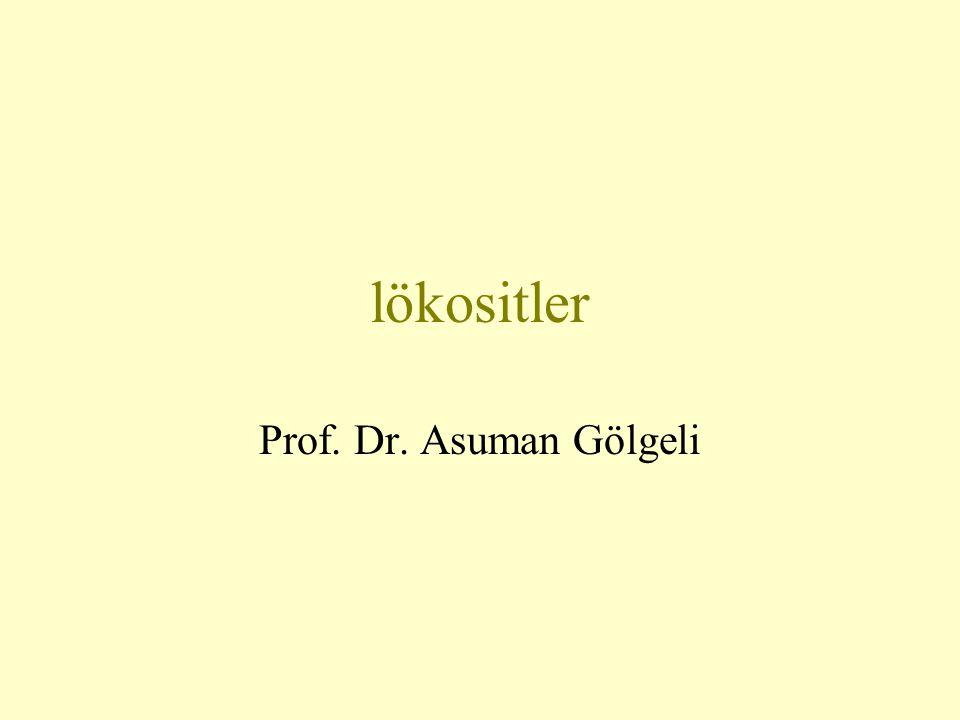 lökositler Prof. Dr. Asuman Gölgeli