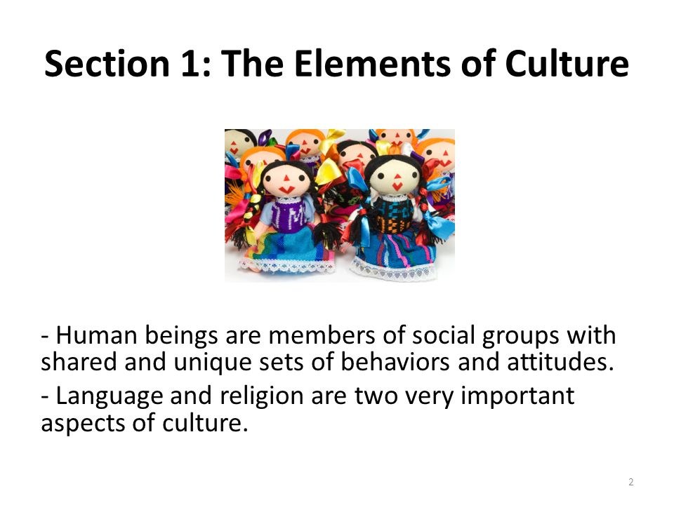 Section 1: The Elements of Culture