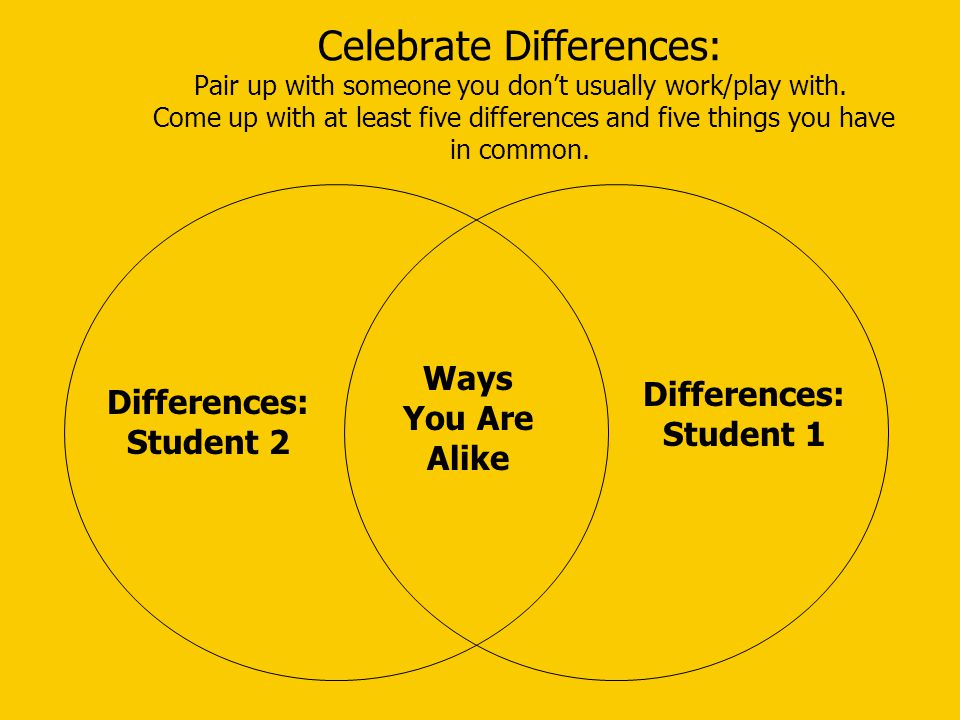 Celebrate Differences: Pair up with someone you don't usually work/play with. Come up with at least five differences and five things you have in common.