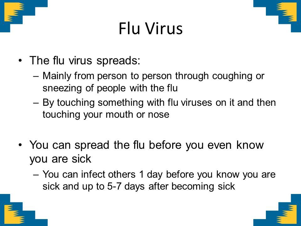 Flu Virus The flu virus spreads: