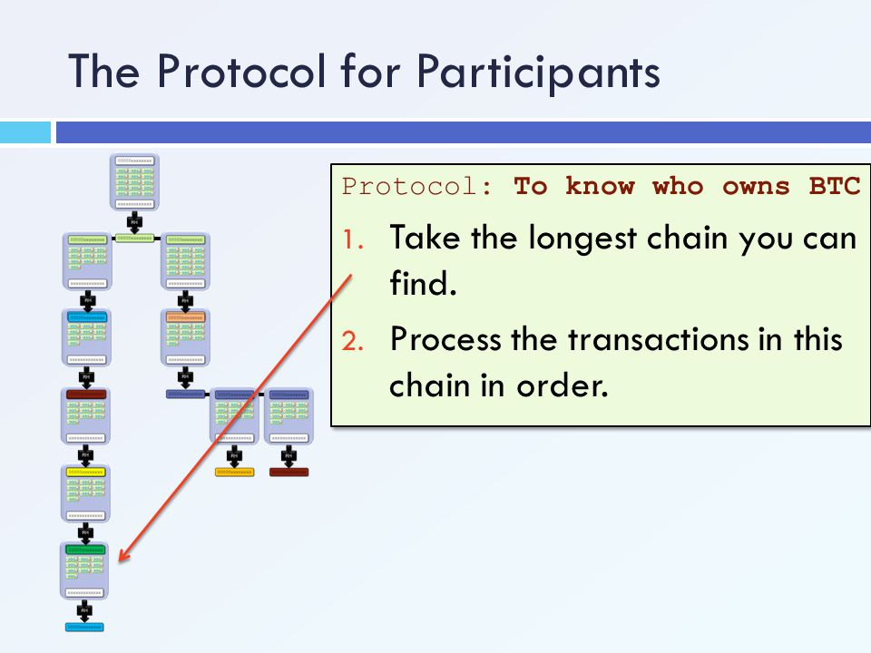 The Protocol for Participants