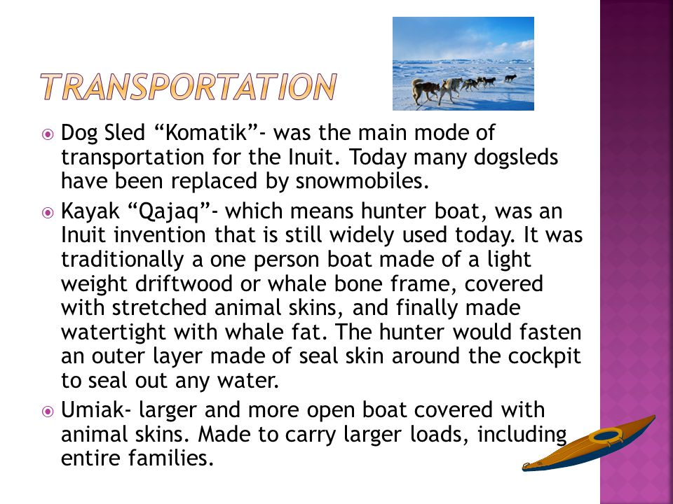 Transportation Dog Sled Komatik - was the main mode of transportation for the Inuit. Today many dogsleds have been replaced by snowmobiles.