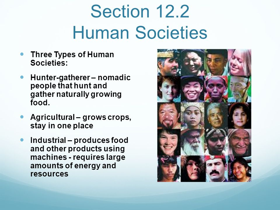 Section 12.2 Human Societies