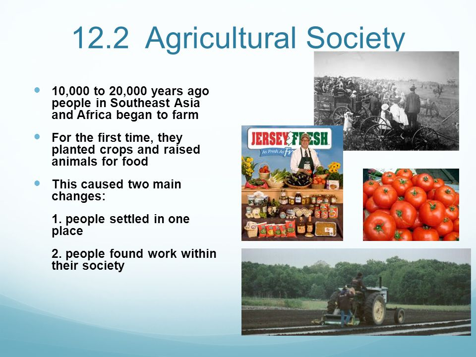 12.2 Agricultural Society 10,000 to 20,000 years ago people in Southeast Asia and Africa began to farm.