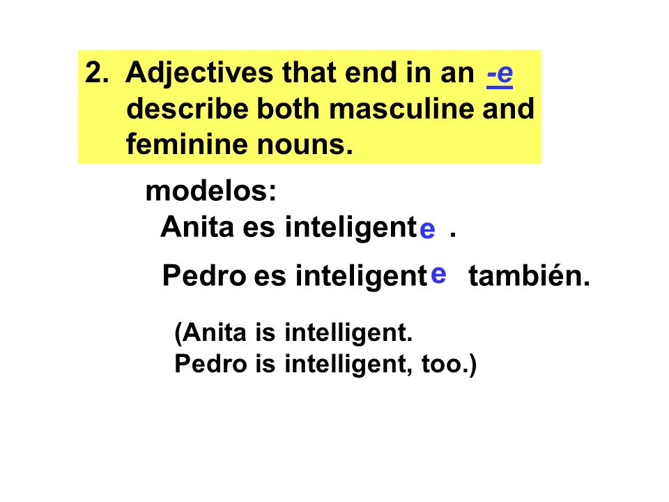 Adjectives that end in an describe both masculine and feminine nouns.