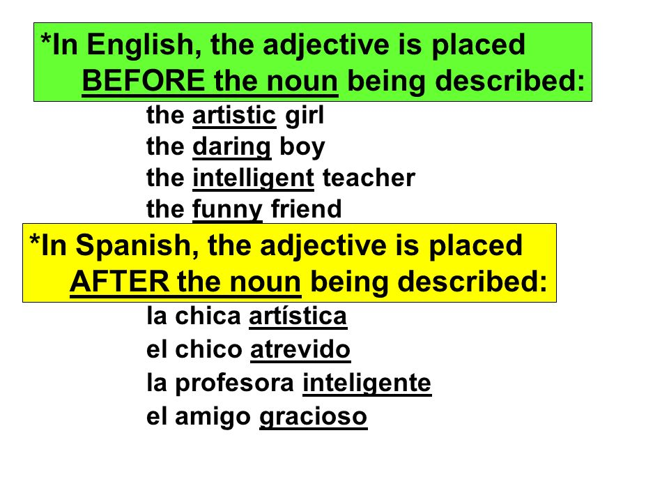 *In English, the adjective is placed BEFORE the noun being described: