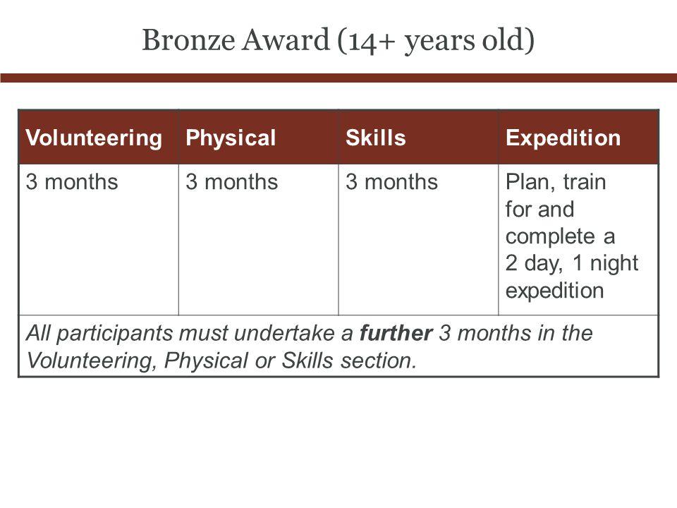 Bronze Award (14+ years old)