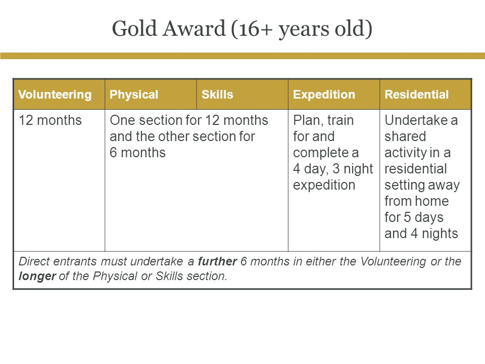 Gold Award (16+ years old)
