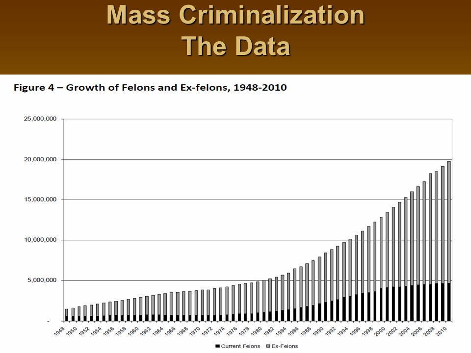 Mass Criminalization The Data