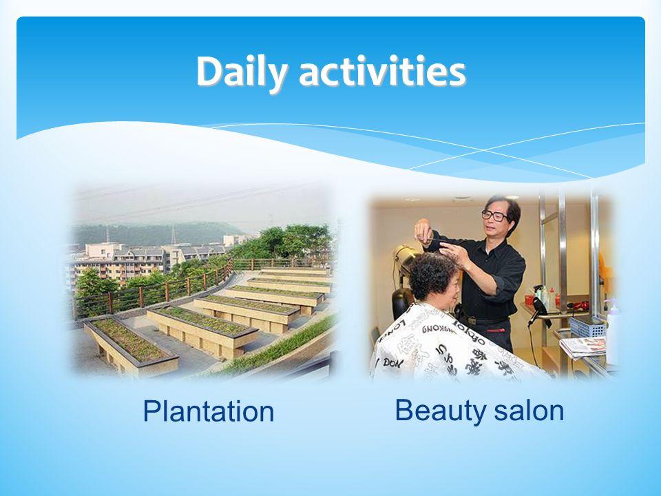 Daily activities Plantation Beauty salon