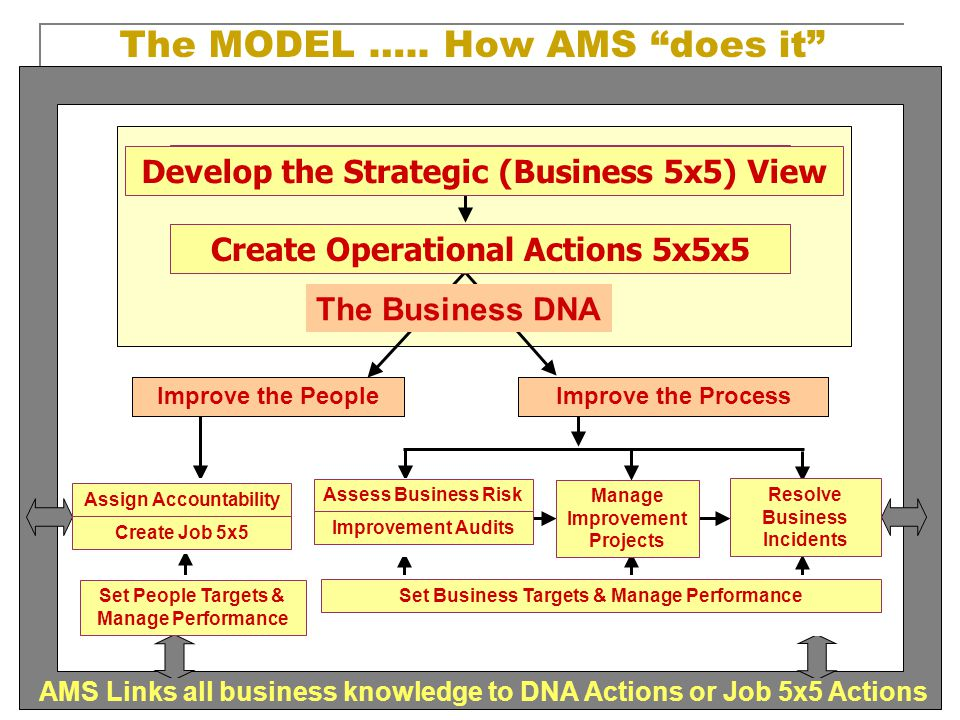 The MODEL ….. How AMS does it