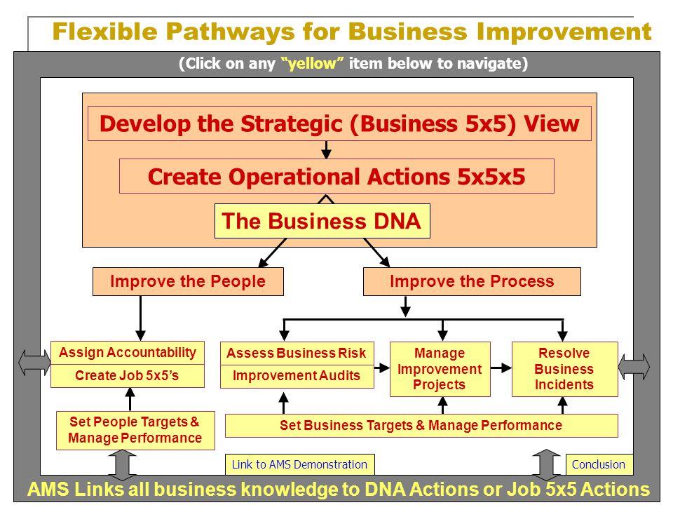 Flexible Pathways for Business Improvement