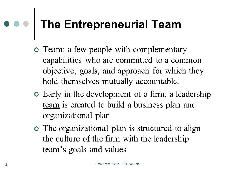 The Entrepreneurial Team