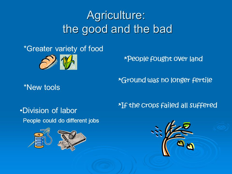 Agriculture: the good and the bad