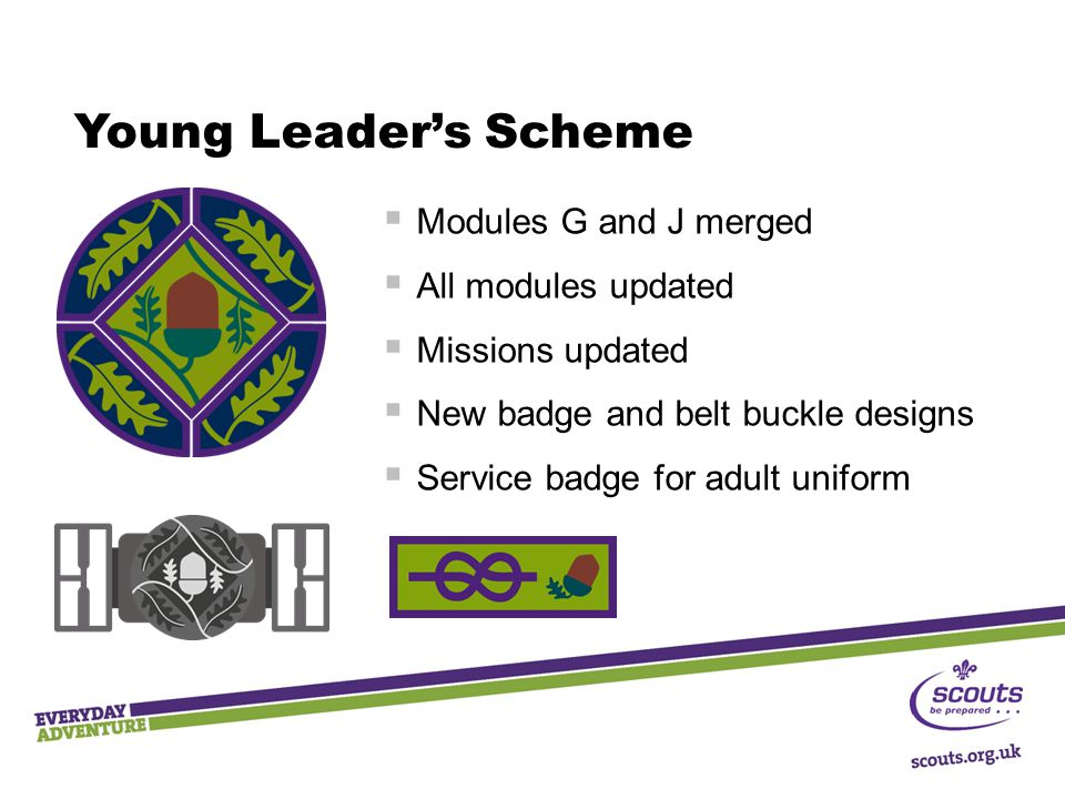Young Leader's Scheme Modules G and J merged All modules updated