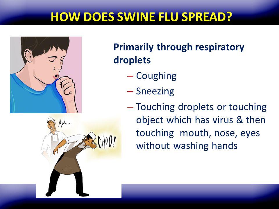 HOW DOES SWINE FLU SPREAD