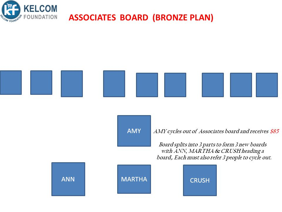 ASSOCIATES BOARD (BRONZE PLAN)