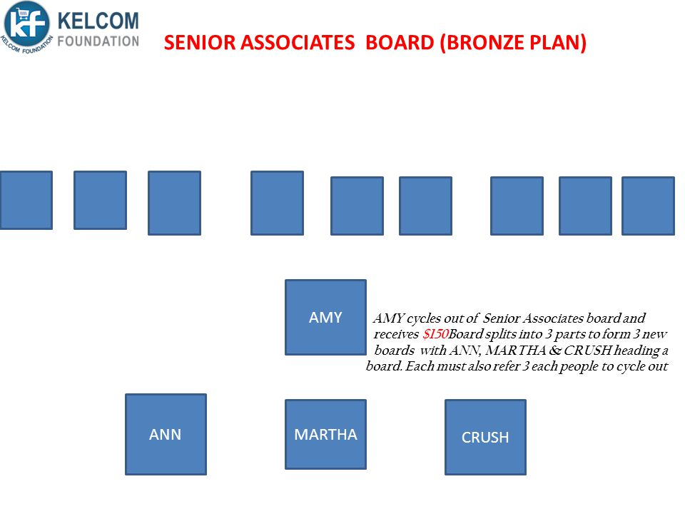 SENIOR ASSOCIATES BOARD (BRONZE PLAN)
